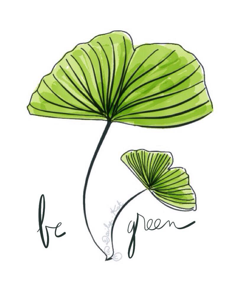 Dessin de Ginkgo, illustration original de DailyKat