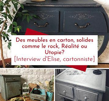 Des meubles en carton recyclé, solides comme le rock : Réalité ou Utopie, Interview d'Elise cartonniste